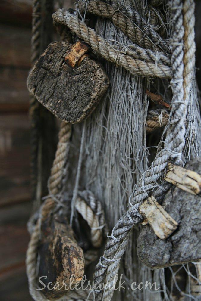Luonto kalaverkot