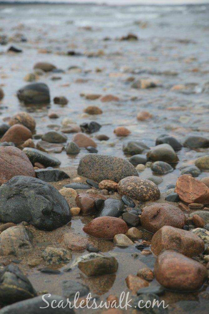 Luonto ranta