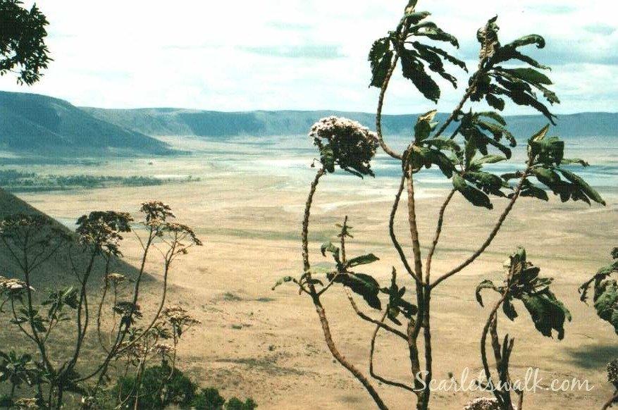 Tanzania Ngorongoro