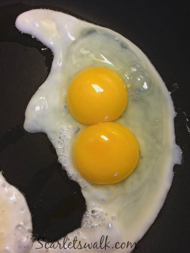 luomu munat