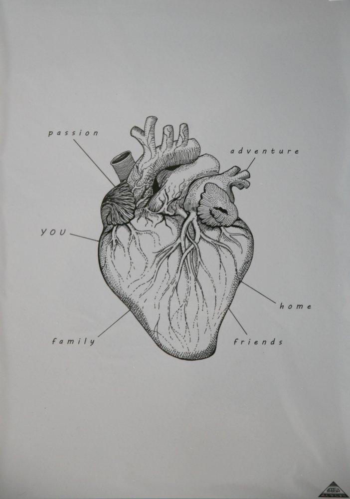 Magela heart