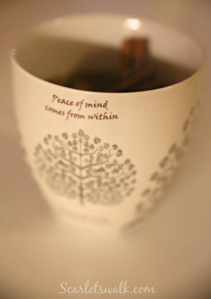 indiska xl mug