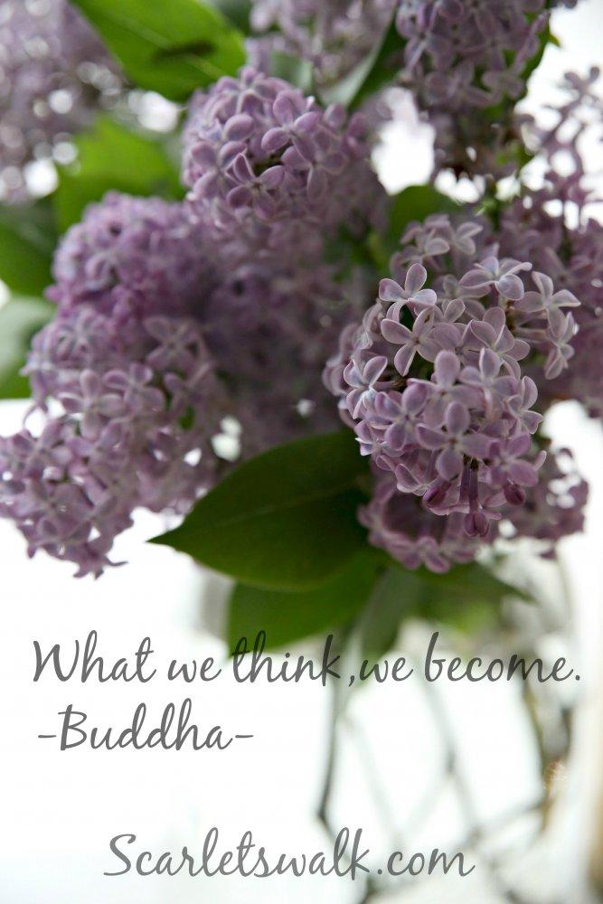 syreenit buddha